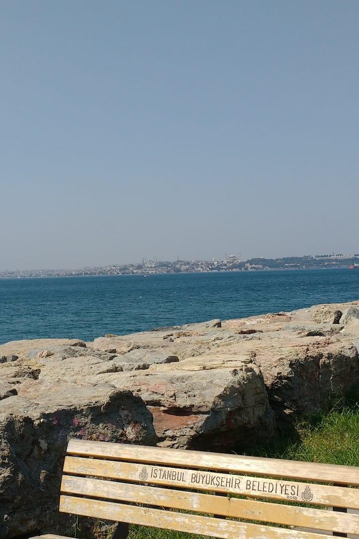 The Moda seaside