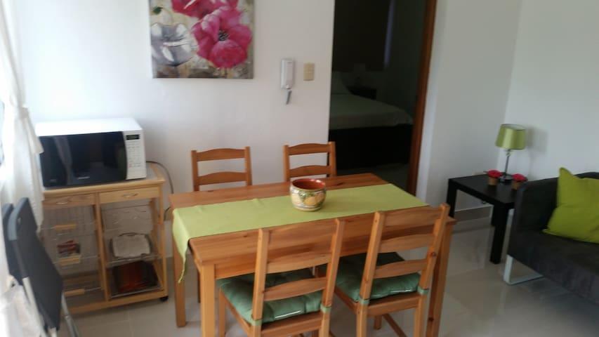 Apartamento amueblado de 1 dormitorio - Santiago de los Caballeros - Byt