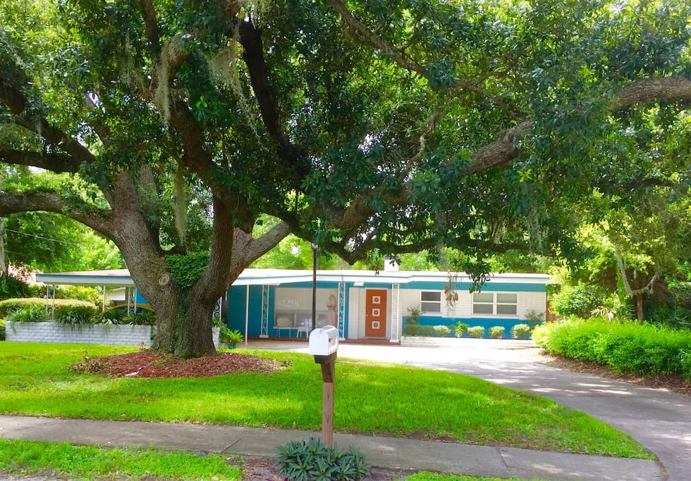 Beautiful 1950s remodeled.