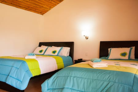 Standard Twin Room Near The Airport - Pifo - Bed & Breakfast