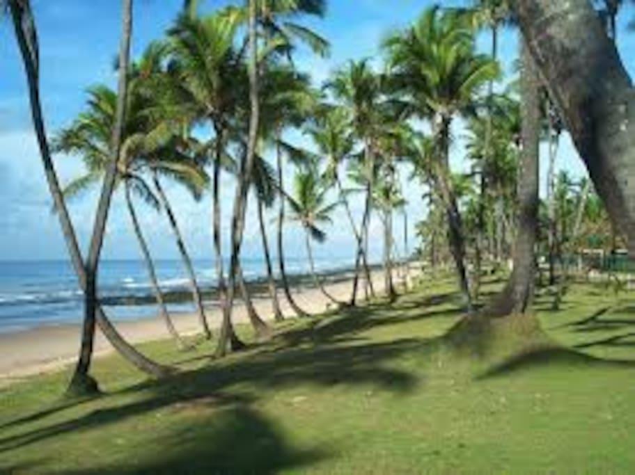 Praia de Vilas do Atlântico-Imagem 1