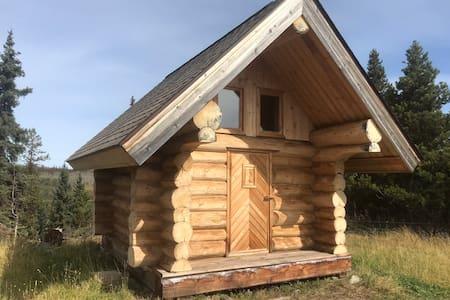 Tiny house on Southside