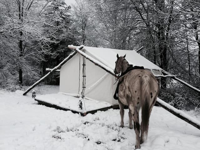 Pioneer Living on Horse farm with Hot Tub
