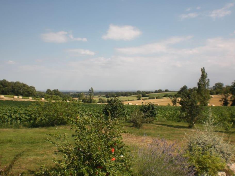 vue sur la campagne