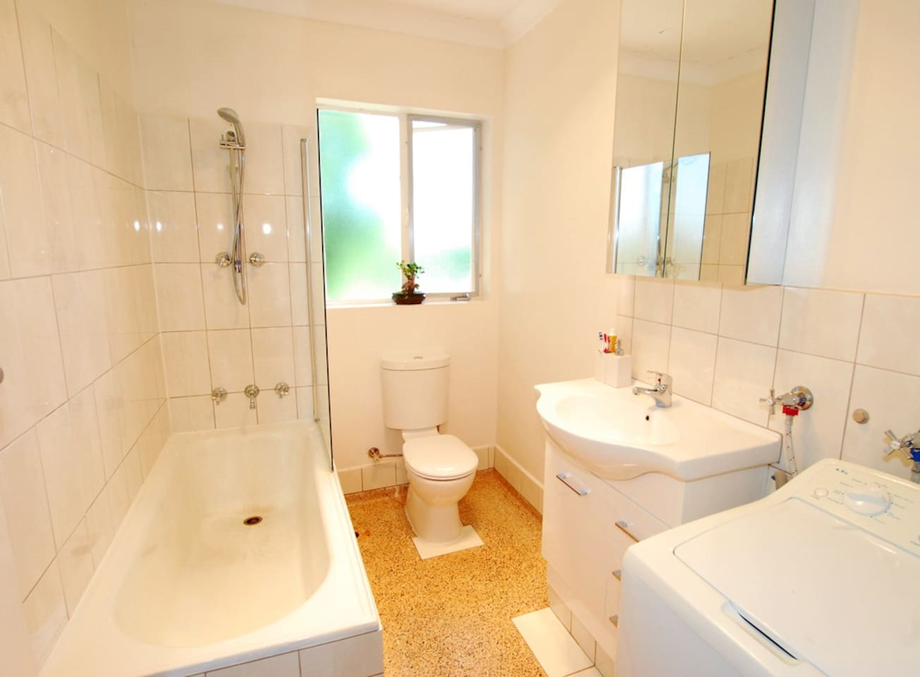 Recently renovated bathroom with washing machine