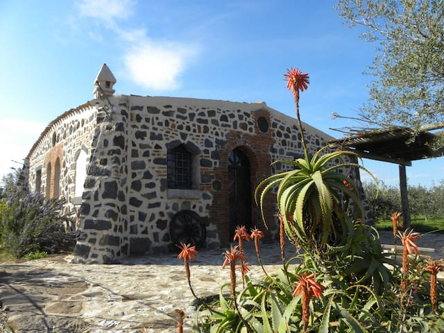 Antico casale - Orosei - House