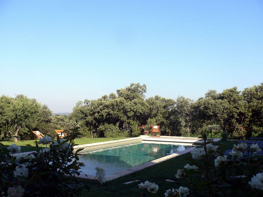 La piscine (chauffée) au calme du jardin