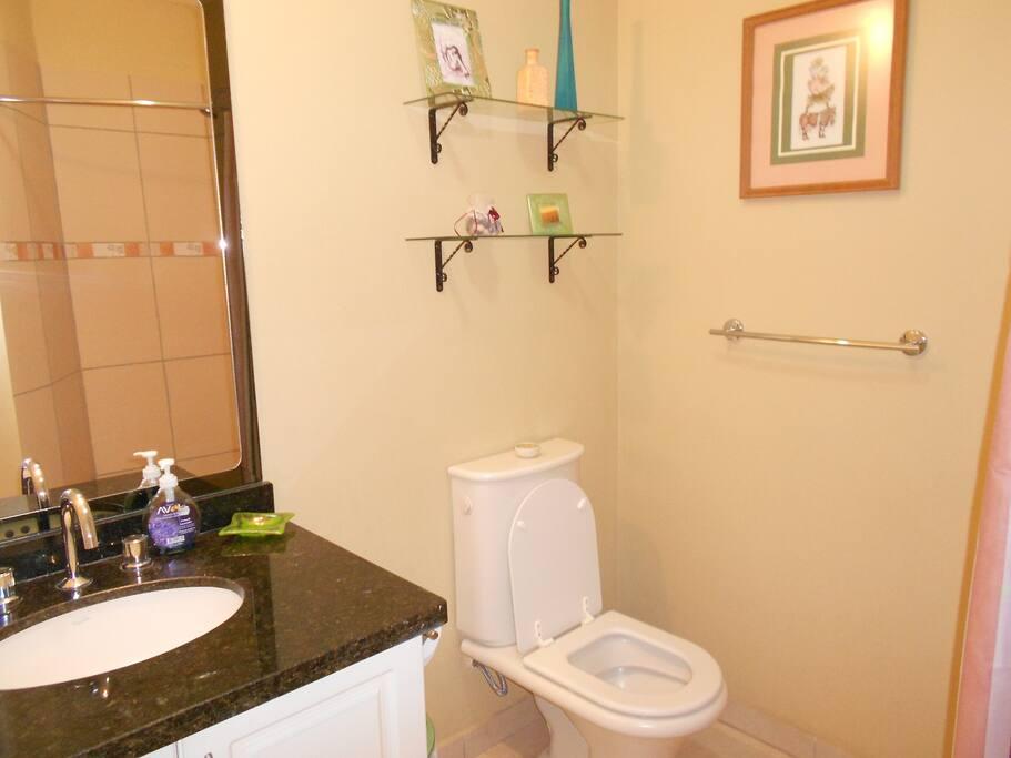 Guest bathroom (w/shower)