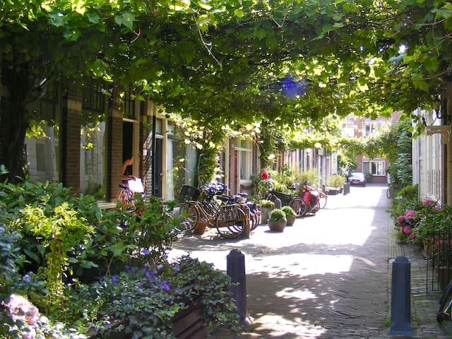Where Els 'Haarlem House for 5'  street level