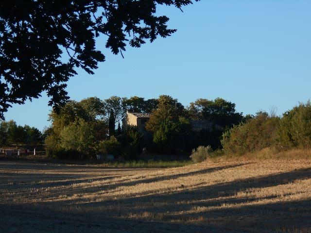 Le Mas de la Clémandière 2 - Valensole - Casa