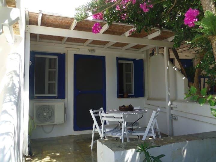 Livadakia apartment walking distance to the beach