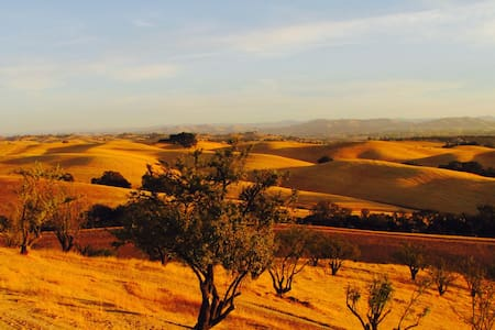 Spacious RV with amazing view. - Paso Robles - Camper/RV