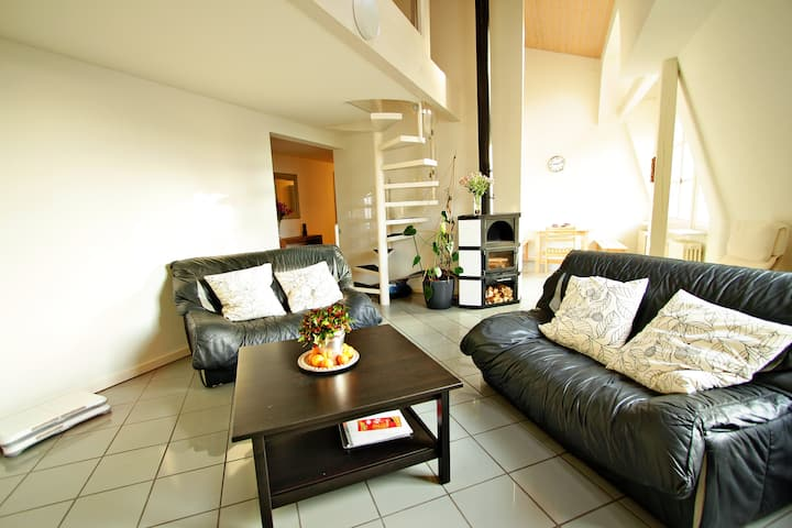 Comfort Apartment in the Embassy area