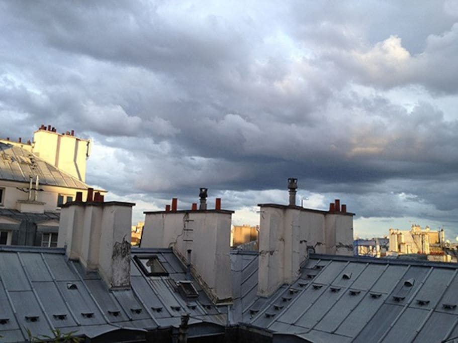 View of Parisian Rooftops
