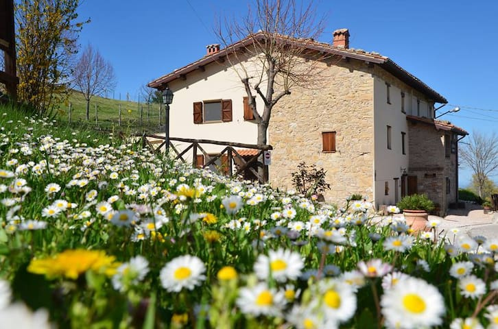 Lovely farmhouse in the Sibillini  - Montemonaco - Apartment