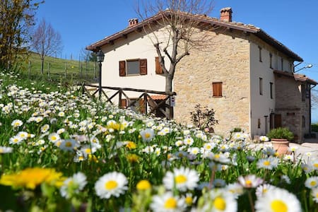 Lovely farmhouse in the Sibillini  - Montemonaco