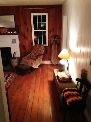 Cozy & stylish Phoenicia cabin-WIFI - Mount Tremper - Ház