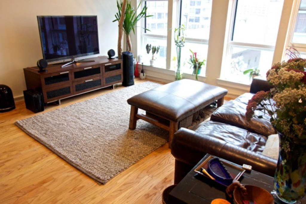 56 Inch LCD TV, amazing stereo, extra deep leather couch (can sleep one), large windows.