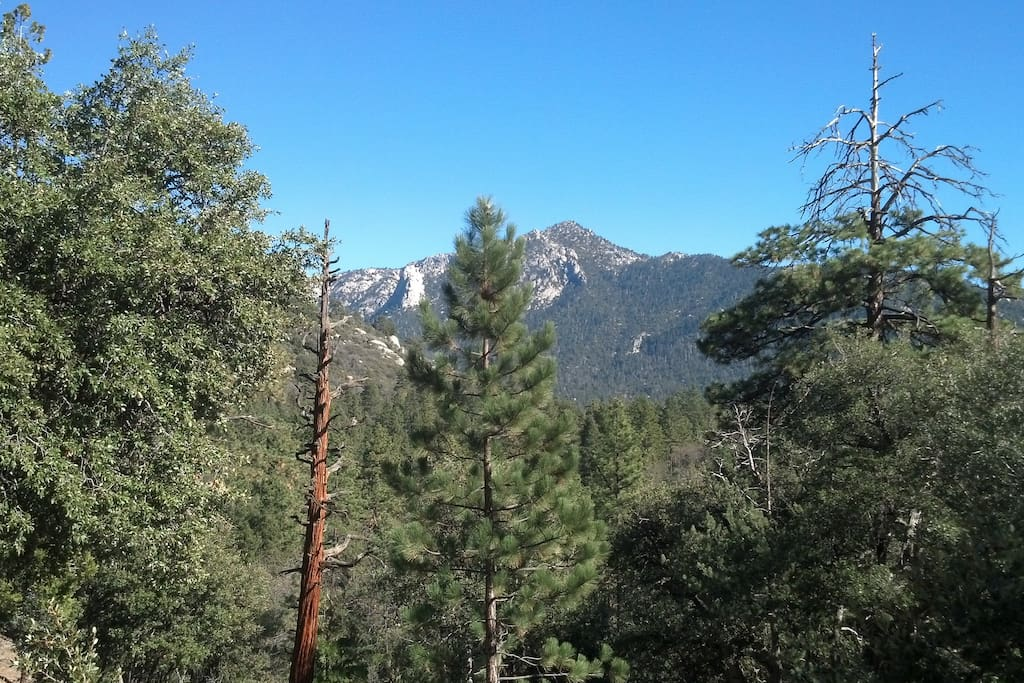 Hiking the Idyllwild area!