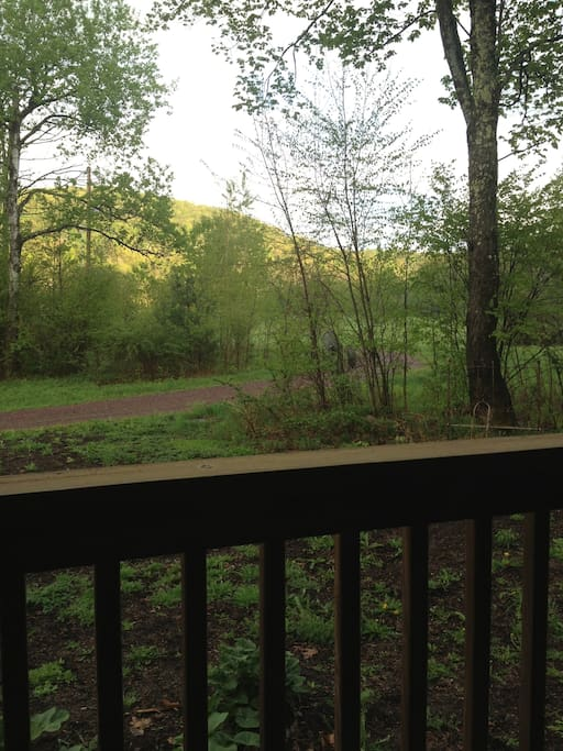 View from porch swing 1.