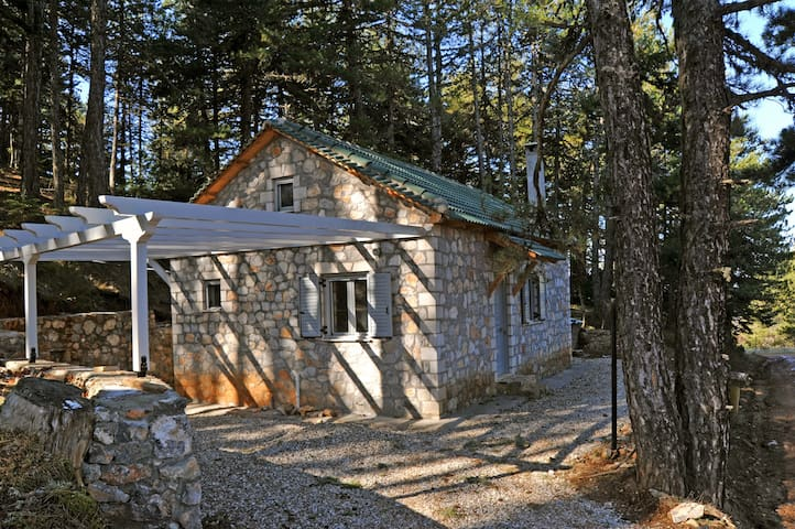 Forest house for mountain biking - Sarantapicho - Huis