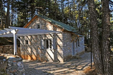 Forest house for mountain biking - Sarantapicho