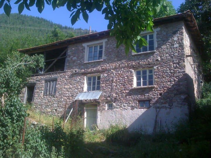 Дом Родопских горах