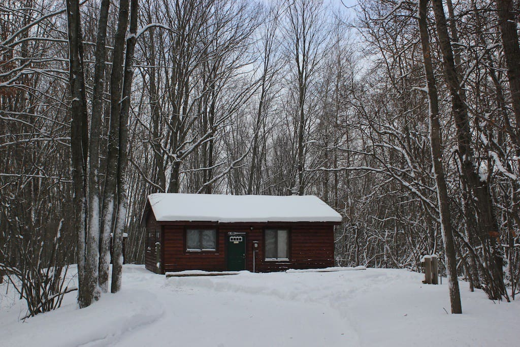 Winter Wonderland in the Manistee National Forest