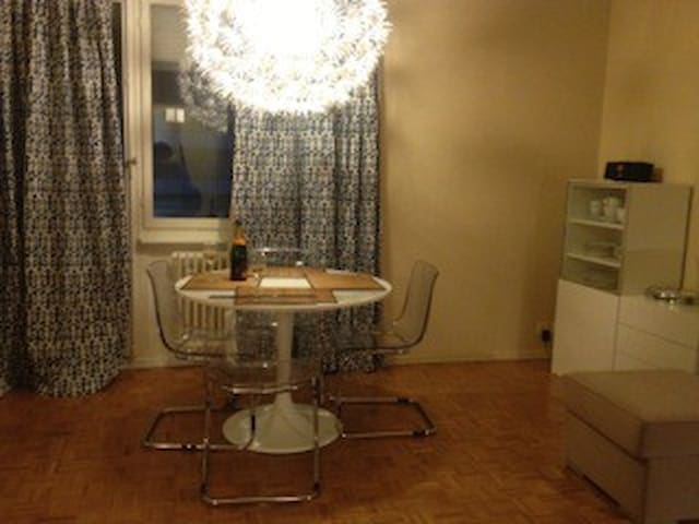 Central yet quiet - Geneva - Apartemen