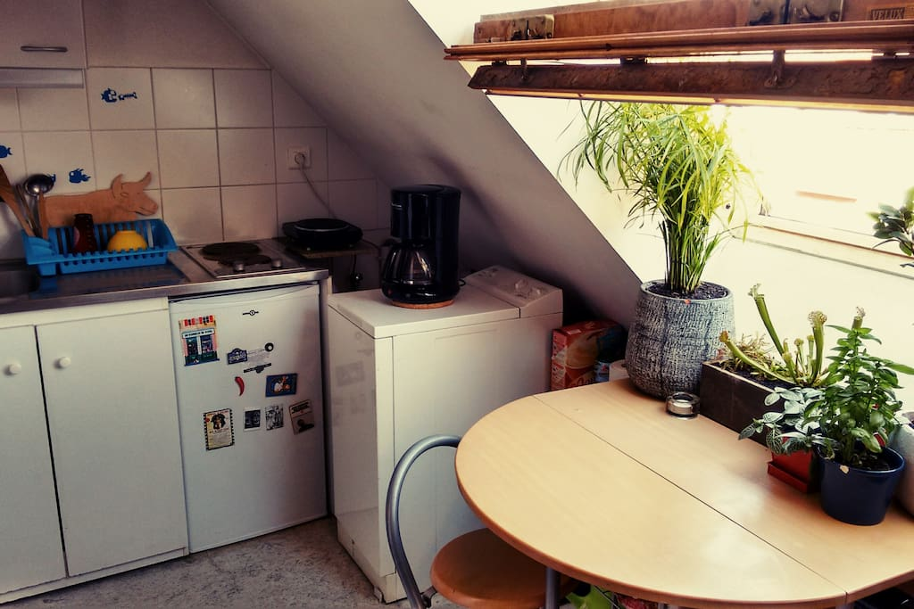 Il y a tout ce qu'il faut pour cuisiner : trois plaques chauffantes, un four, un wok et des poêles, etc.