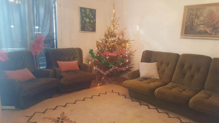 Cozy 1bd apartment in heart of Belgrade