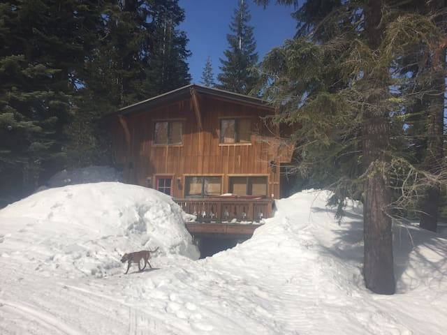 EPIC Mtn view Sugarbowl cabin for weddings, skiing