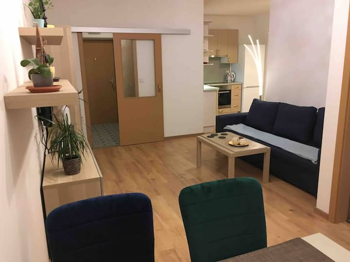 New apartment, 2 rooms, balcony, AIRPORT 20 min