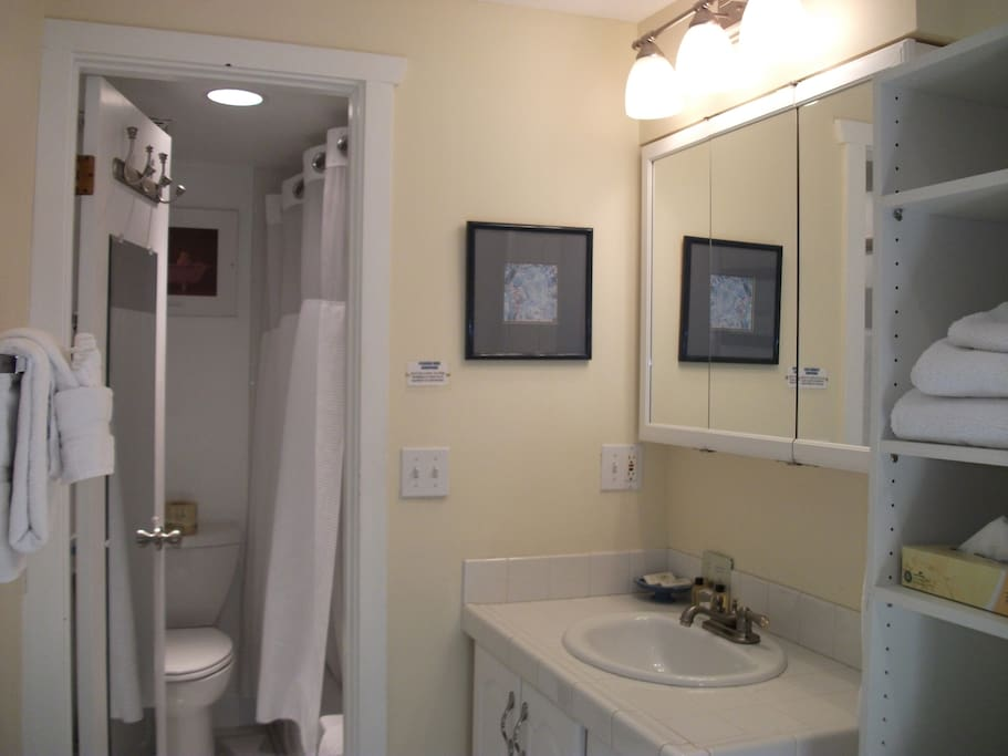 Separate bath area w/private tub/shower/toilet facilities