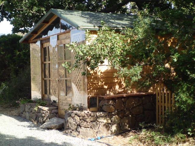 La Casa negli Alberi