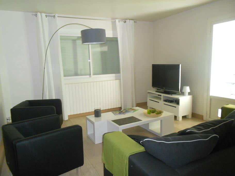 le salon avec écran plat et chaînes internationales,dvd ,wifi
