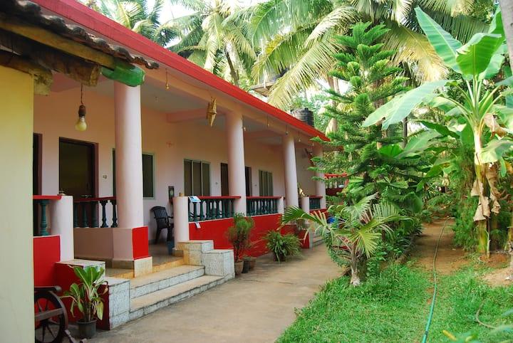 Omkar guest House, room number- 4 beatul nuts tree