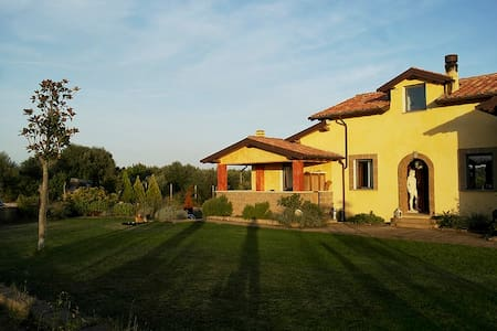 La Banditella, artist's house 01 - Tuscania - Bed & Breakfast