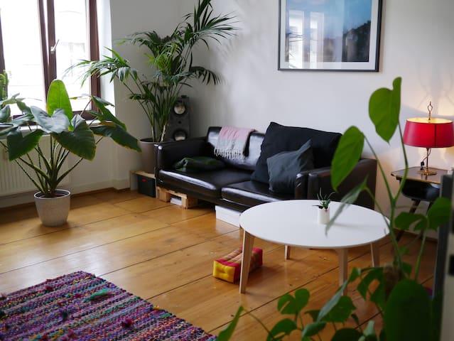 Cosy & pretty apartment close to city and river