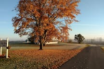 Quiet Country Horse Farm - Bellefontaine, OH.