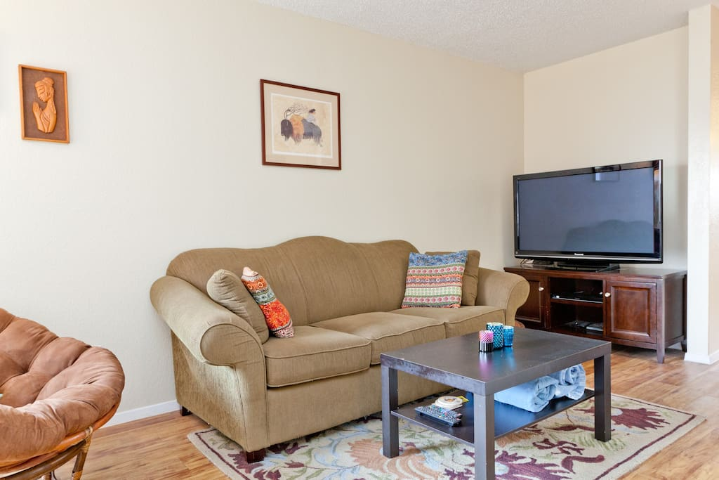 Cozy 1 Bedroom In Hip East Austin Apartments For Rent In