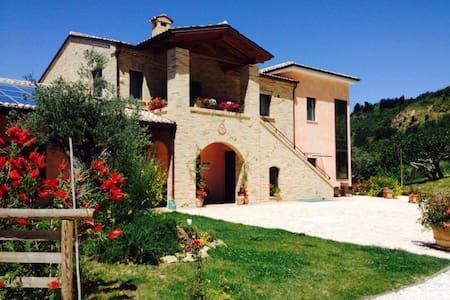 Bio Agriturismo Il Falco - Sant'Elpidio a Mare - Sant'Elpidio a Mare - Pis