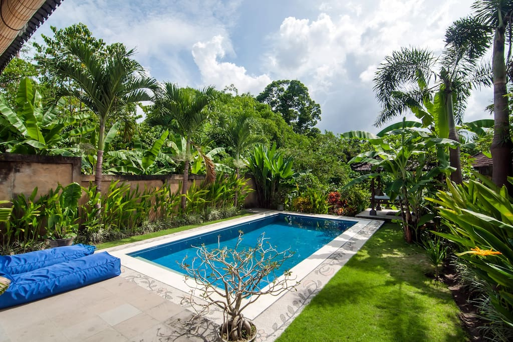 The garden with pool and the amazing view on the lush woods and river.