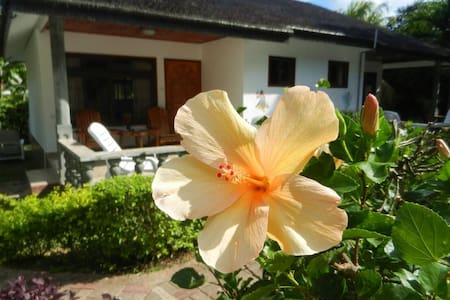 B&B Bungalow on La Digue - Bed & Breakfast