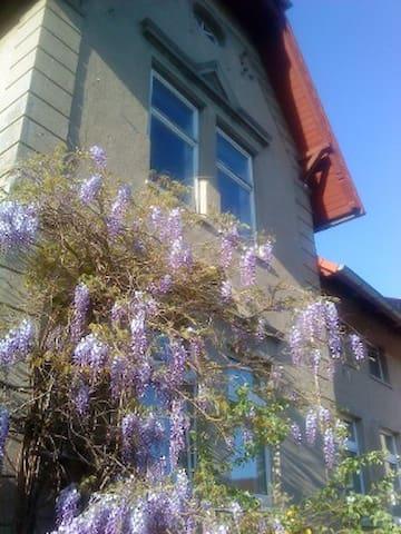 Gruppenhaus Zwei Schwalben - Sandau (Elbe) - Hus