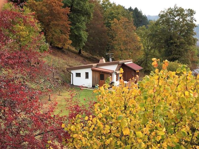 Chalet cosy dans un cadre idylique - Bitschwiller-lès-Thann - Hus