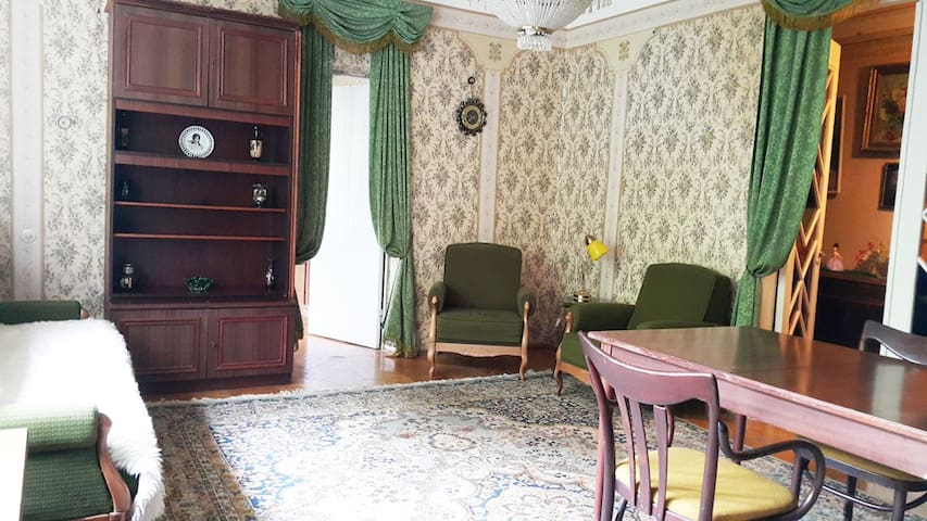 Vintage apartment in city center - Kiev - Apartamento