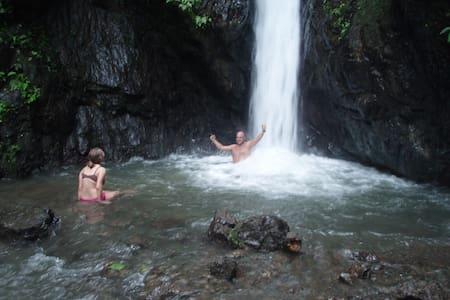 Bolita Rainforest Hostel - Puerto Jiménez - Schlafsaal