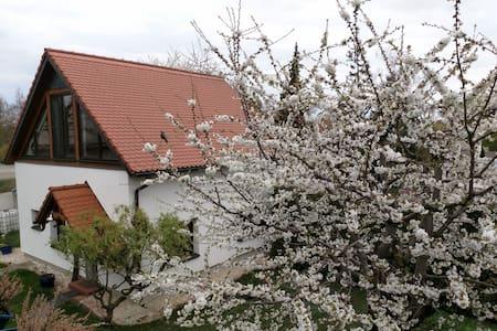 "Ferienhaus ""Zur alten Fahrschule"""