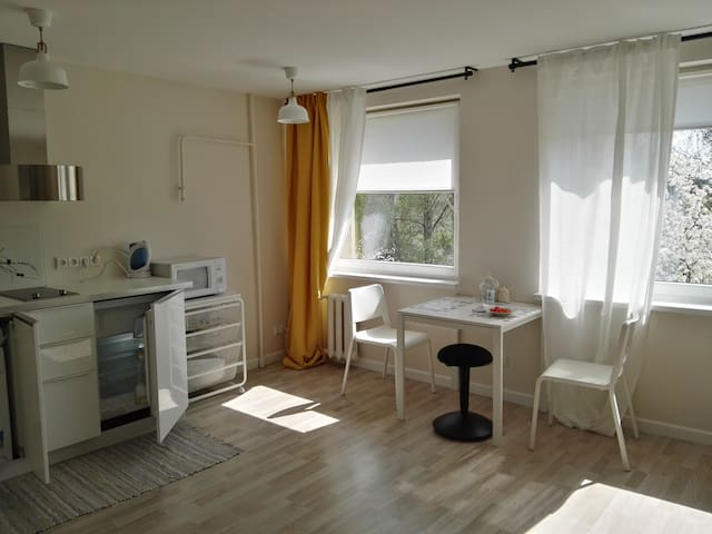 Comfortable apartment in the city center.